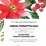 Poinsettia Sale